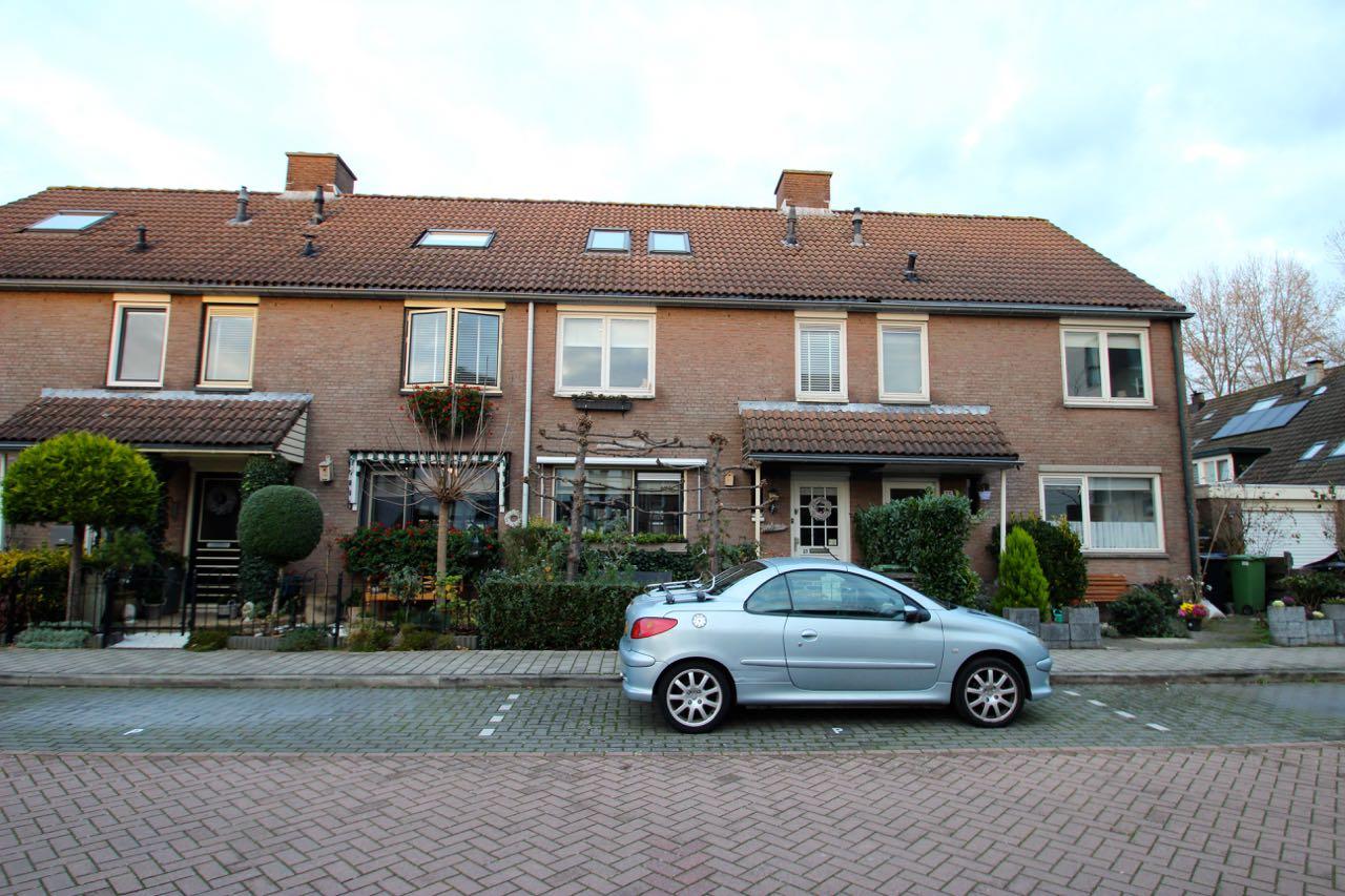 Rijnland, Huizen
