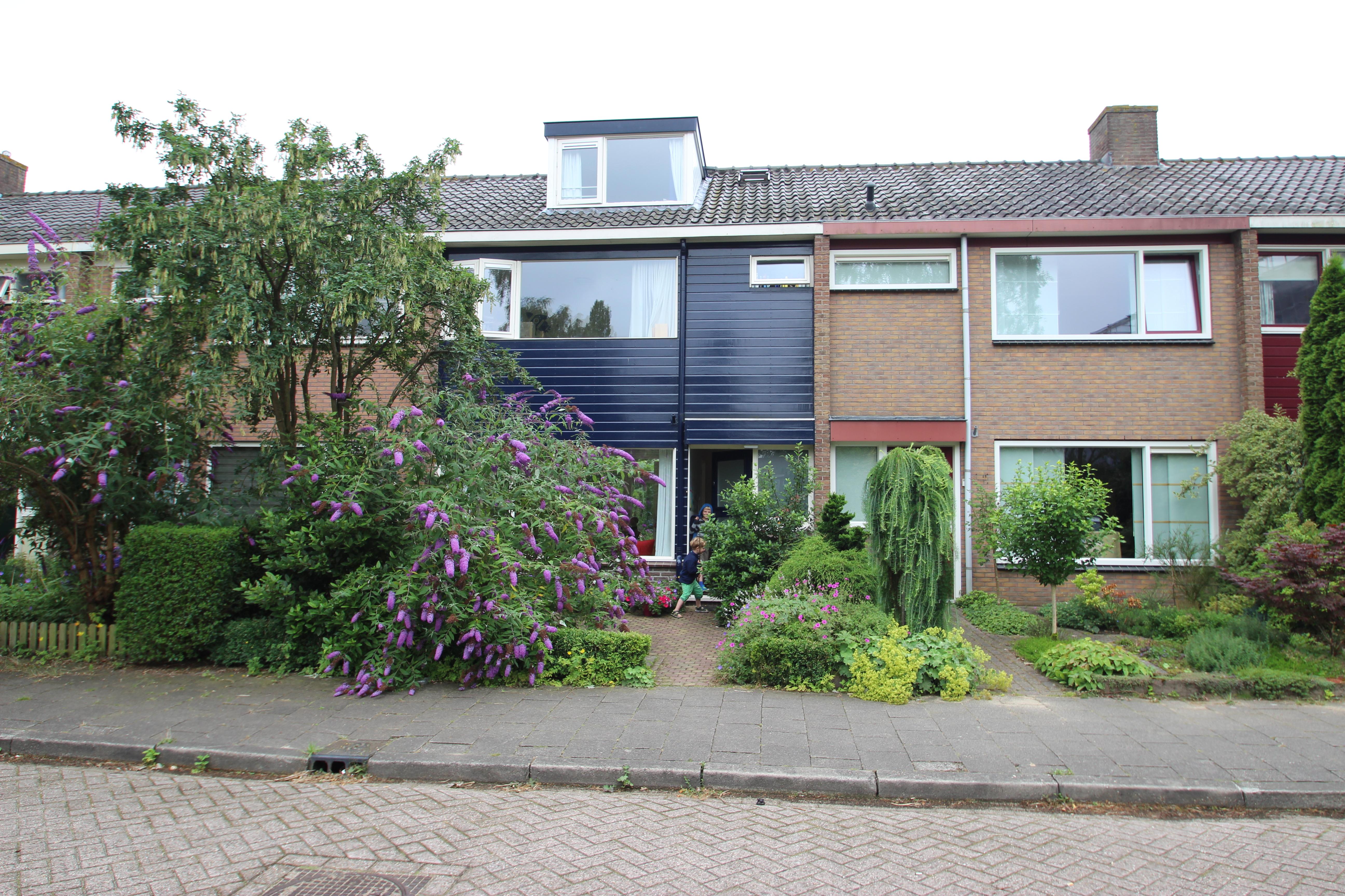 Savorin Lohmanweg, De Bilt